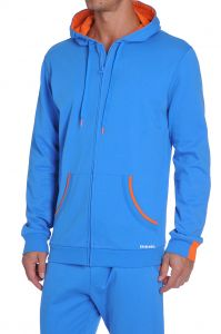 Diesel Brandon Z Sweater Royaalblauw