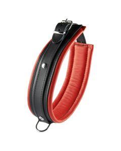 Zwart met rode halsband 5 cm